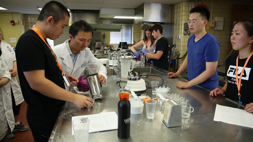 Students working in a lab with a professor